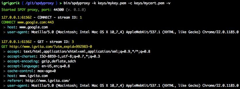 SPDY Proxy